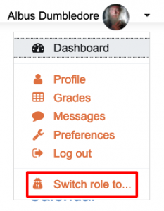 Menu selector to switch role in Moodle